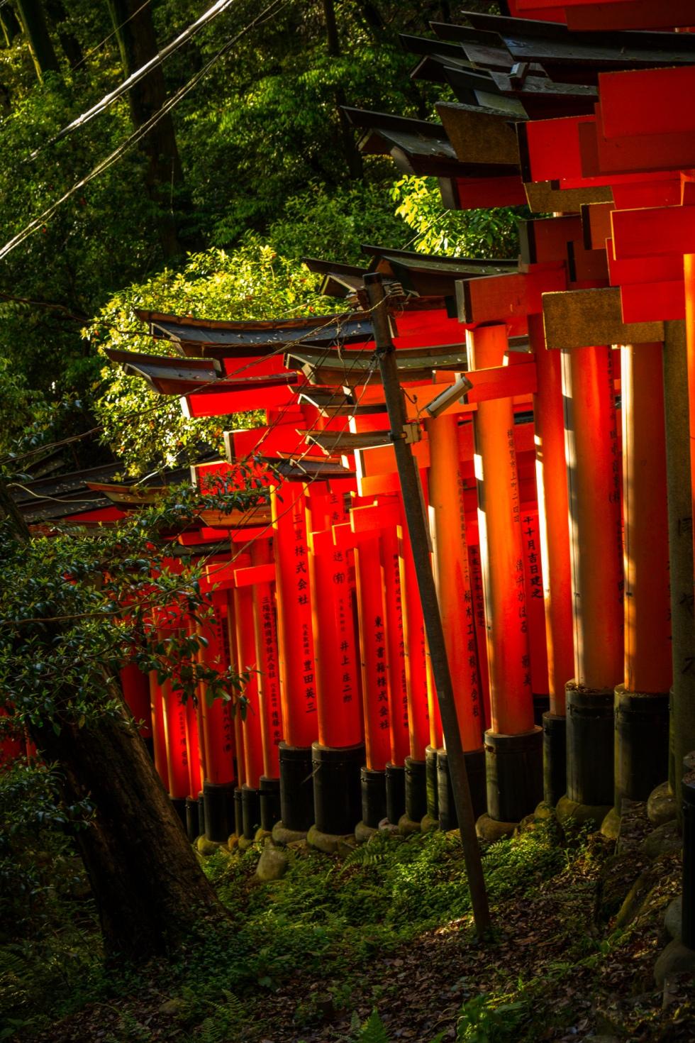 Japan_20160511_87